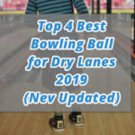 Top 4 Best Bowling Ball for Dry Lanes 2020 (July Updated) - Reviews